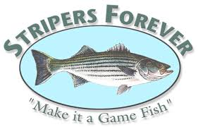StripersForever